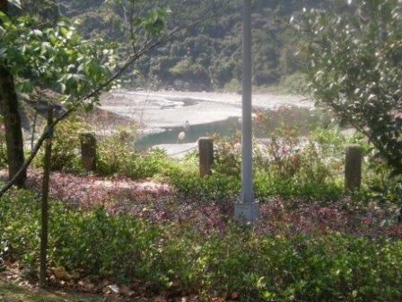 29北勢溪洶湧的水源提供翡翠水庫使用致多數時間砂石曝露鋪滿溪床.JPG