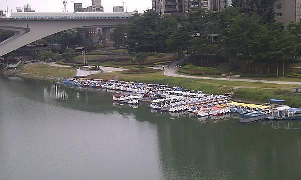 碧潭東岸排列整齊的天鵝船