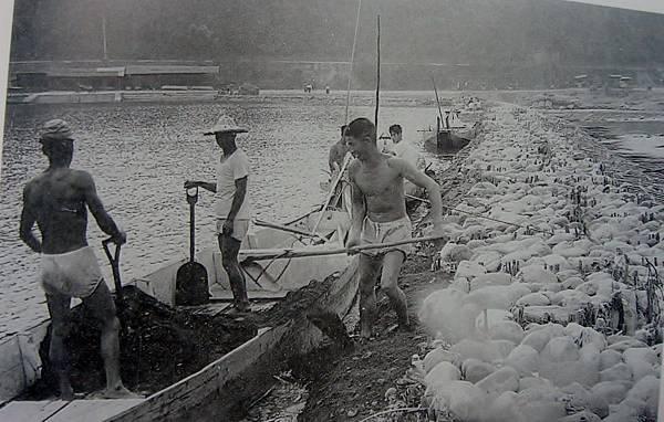 工人在碧潭從事竹蛇籠鋪設砂石及修築護岸工程(照片提供周萬益)