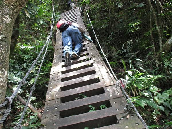 步步為營的崖梯