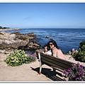 monterey海岸