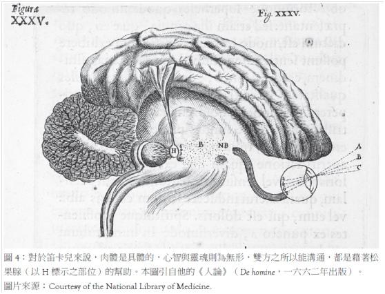 活體解剖的年代_圖