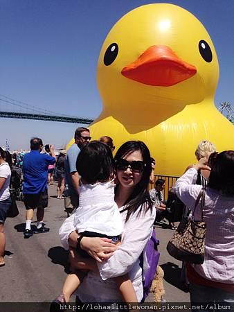 超萌的黃色小鴨