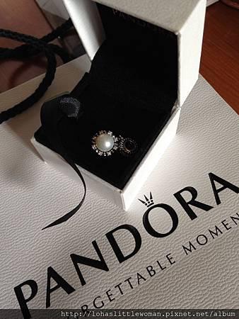 我的Pandora小收藏