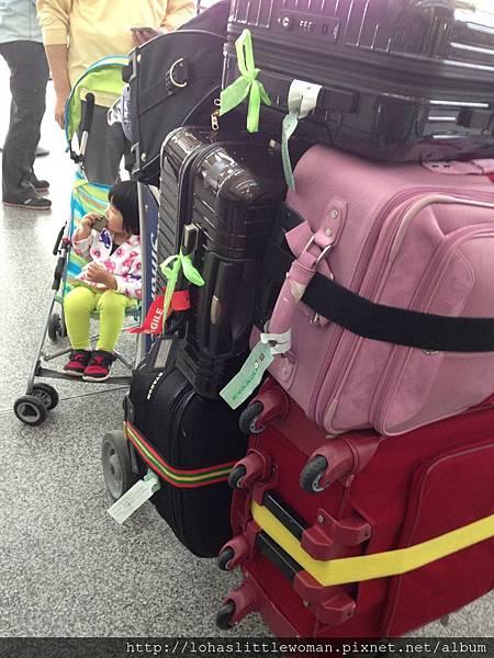 2015台灣遊