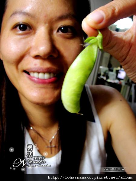 wan_beans_33.jpg