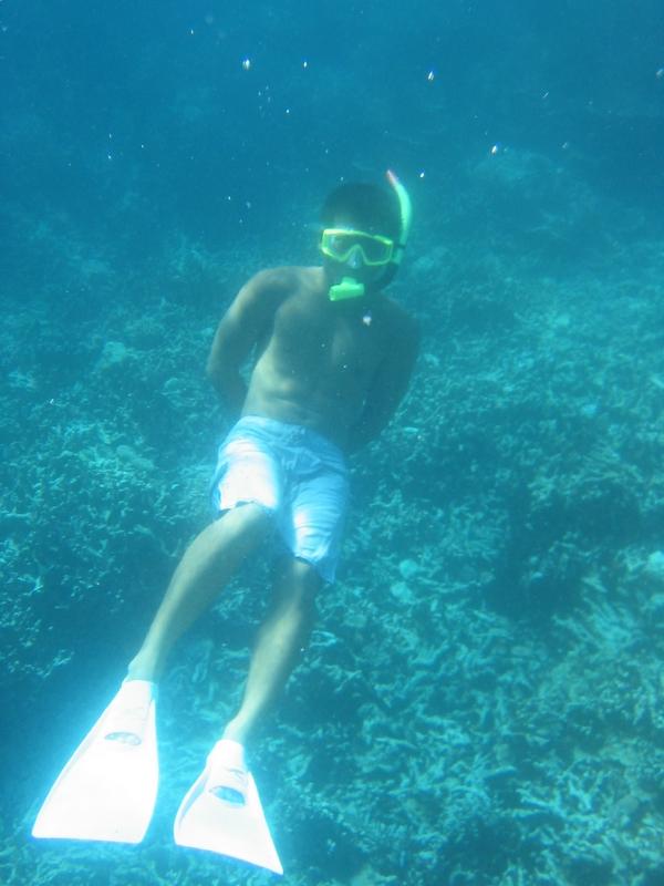 洛克群島 - 葉型珊瑚區