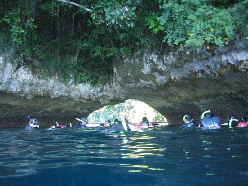 洛克群島 - 軟珊瑚區