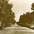 1900年彌敦道
