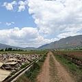 2016-05-04 沙溪古鎮-漫步