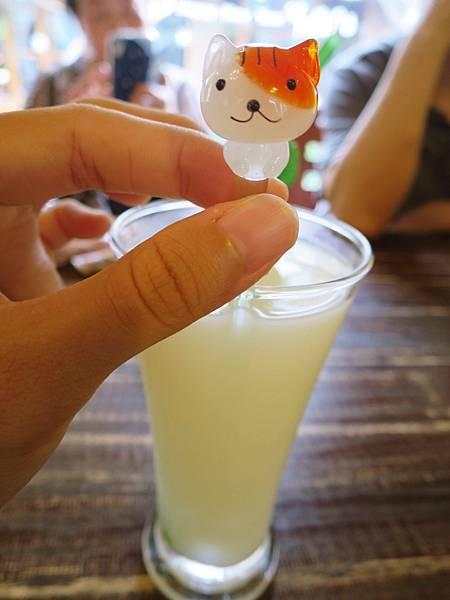 橄欖樹咖啡民宿48