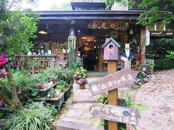 橄欖樹咖啡民宿01