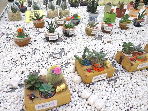 金車蘭花園33.JPG