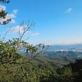 龍船岩 (39).jpg