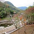 小烏來天空步道 (32).jpg