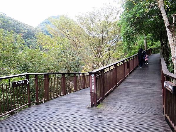 小烏來天空步道 (36).jpg