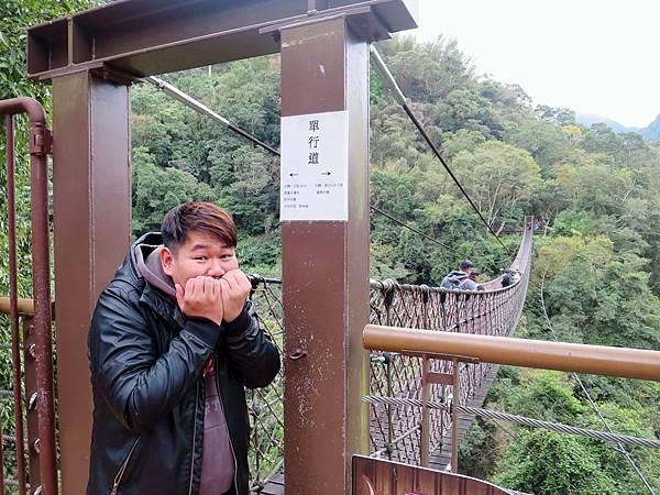 小烏來天空步道 (60).jpg