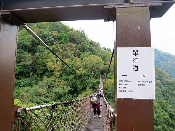 小烏來天空步道 (61).jpg
