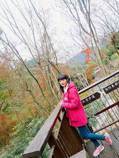 小烏來天空步道 (30).jpg