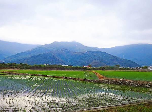 關山親水公園 (12)