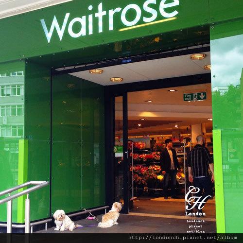 Waitrose-Dog