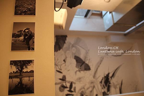 Lantanacafé12.jpg