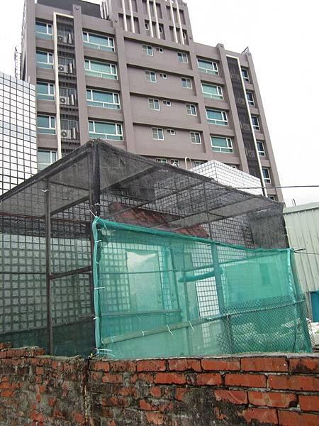 新菜園 007-1.jpg