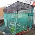 新菜園 002-1.jpg