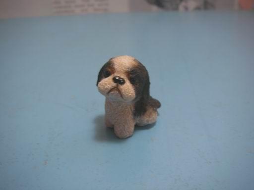 小狗的歷程7.JPG