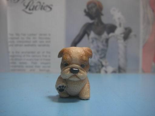 小狗的歷程8.JPG