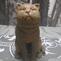 貓咪進化史8-2.jpg