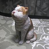 貓咪進化史9-1.jpg