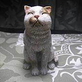 貓咪進化史9-2.jpg