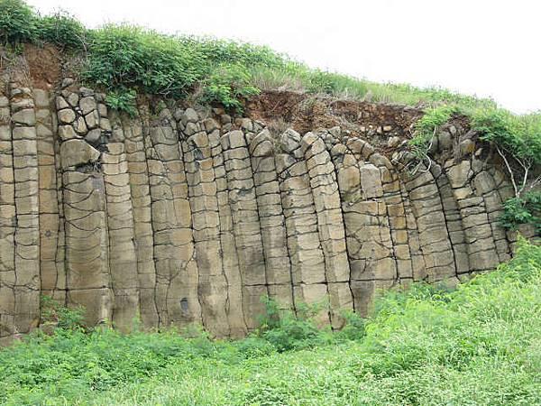 大菓葉柱狀玄武岩2