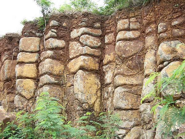 大菓葉柱狀玄武岩4
