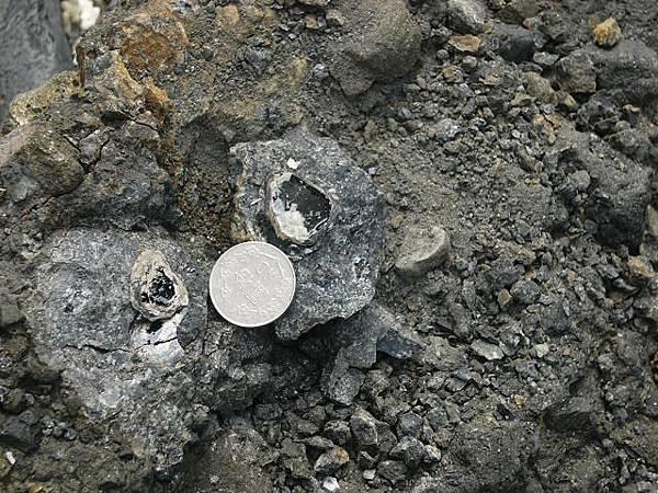粗晶的鐵鎂質礦物-黑雲母