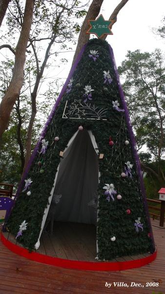 P1090025-聖誕樹.JPG