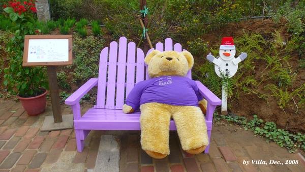 P1090086-紫熊.JPG