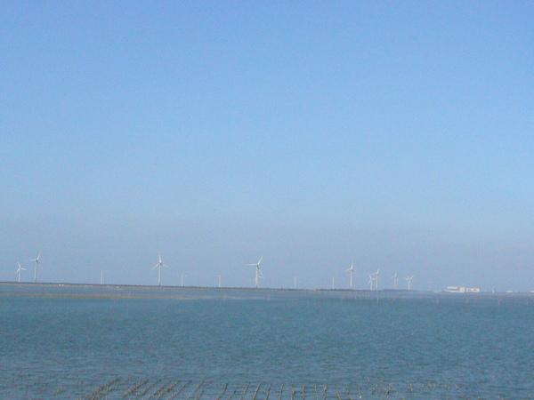 海邊的風扇們