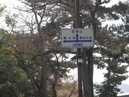 奈良公園裡面