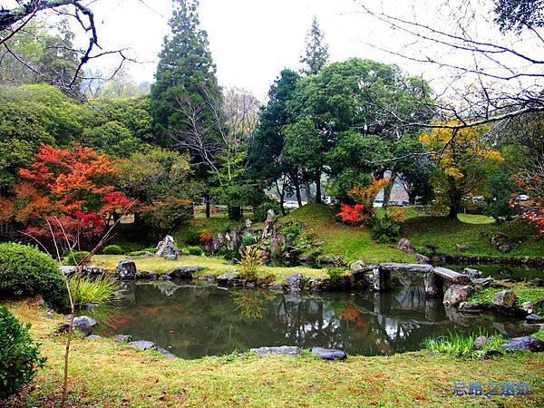 5相良神社小湖.jpg
