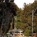 24高山櫻山八幡宮參道.jpg