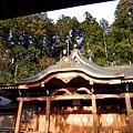 27高山櫻山八幡宮拜殿-1.jpg