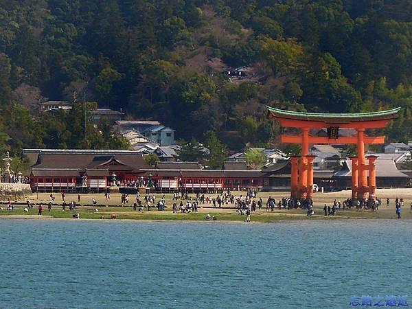 3嚴島神社鳥居退潮-1.jpg