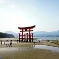 4嚴島神社鳥居退潮-2.jpg