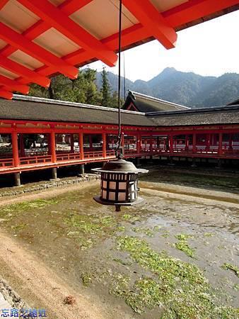 9嚴島神社迴廊-1.jpg