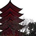 31宮島五重塔-3.jpg