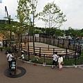 43旭山動物園-長頸鹿.jpg