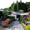 8苔寺妙眾門往西來堂.jpg