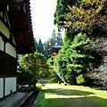 13苔寺宗務所向納經塔.jpg